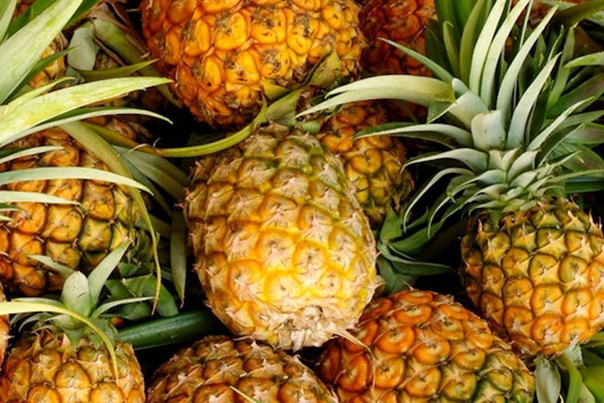 Natural Pineapple3